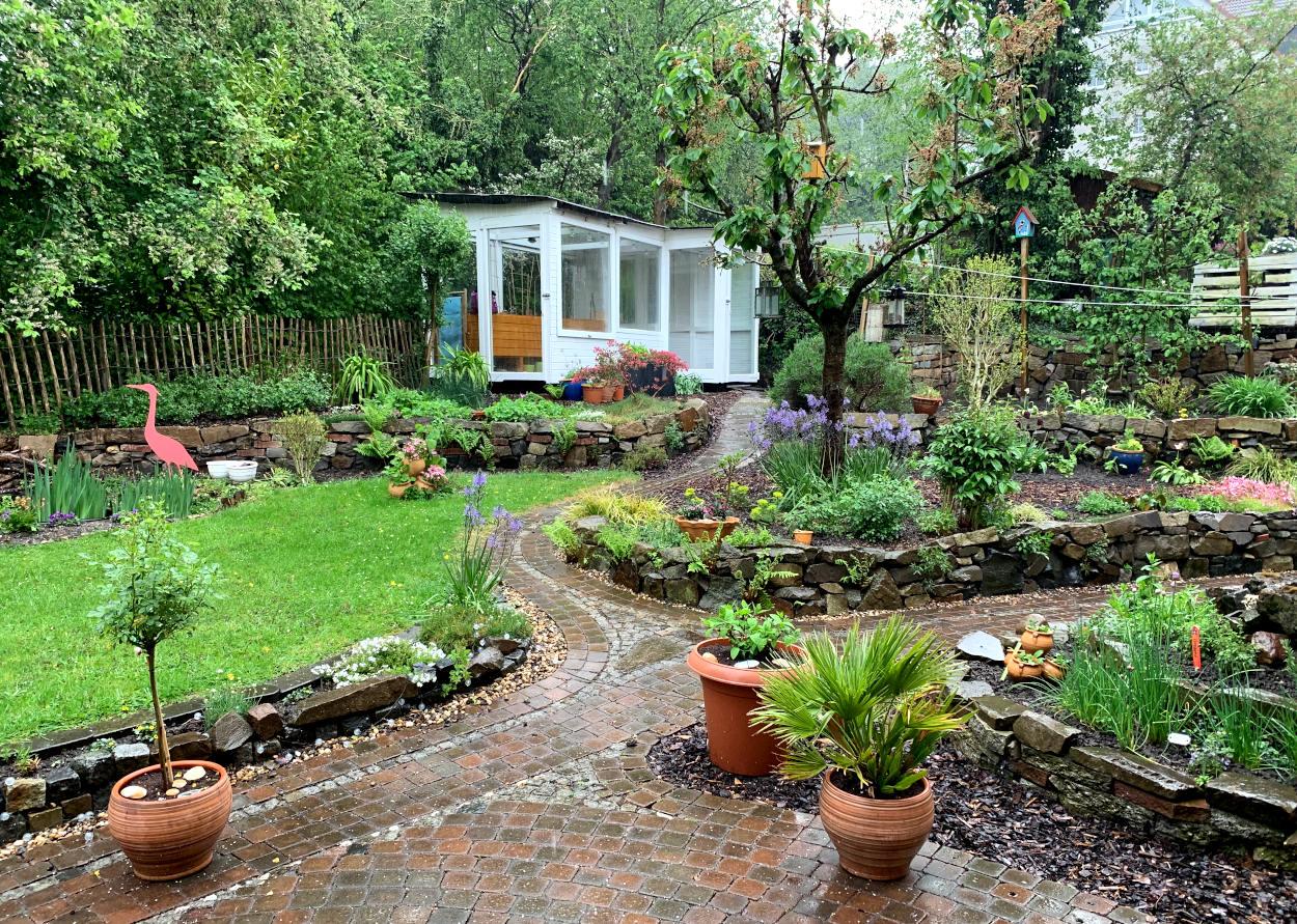 Garten: Terrasse, Rasen, Bäume, Gewächshaus - nass vom Regen.