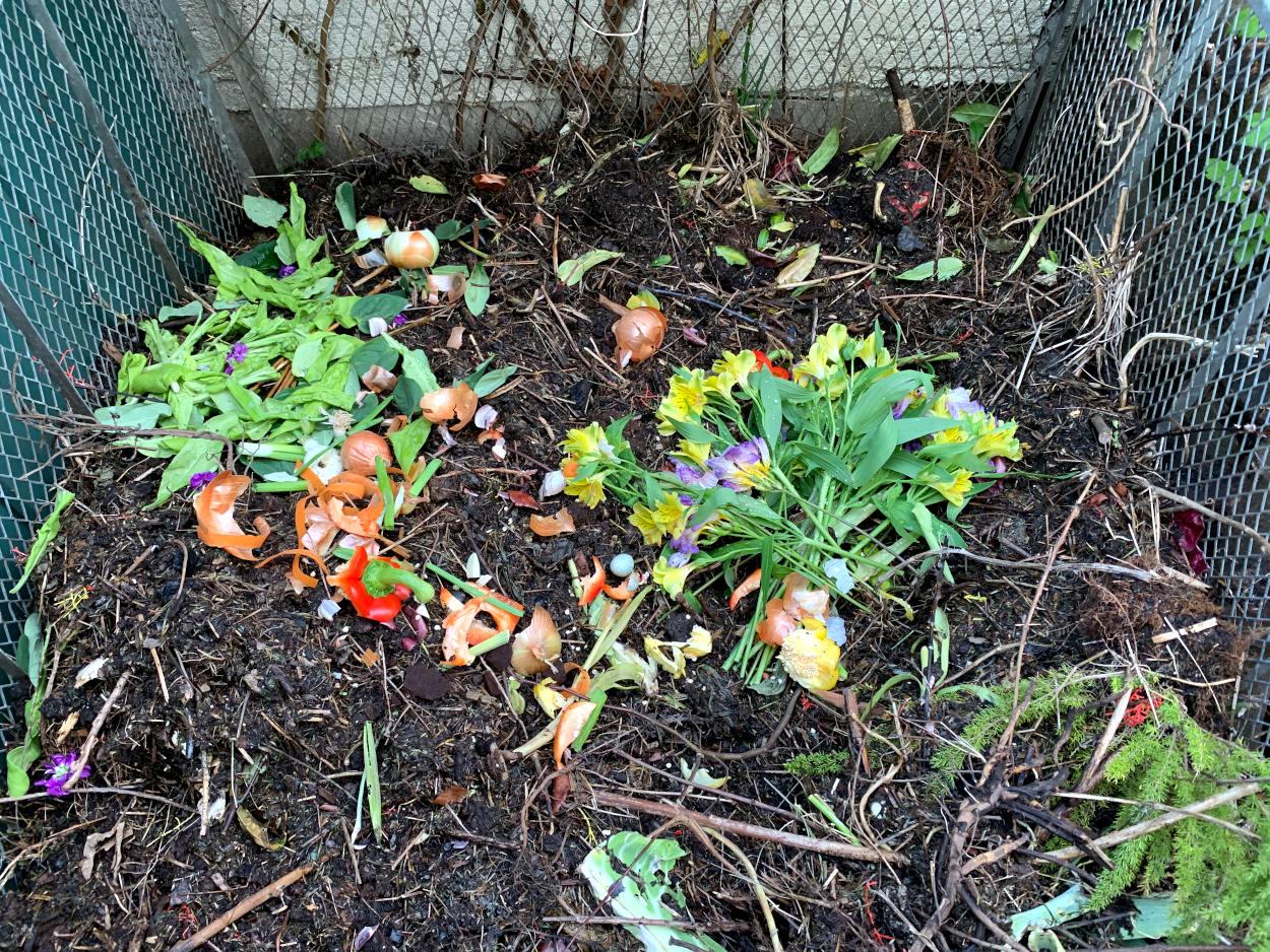 Kompost mit Erde, Hölzchen, Blumen, Zwiebelresten