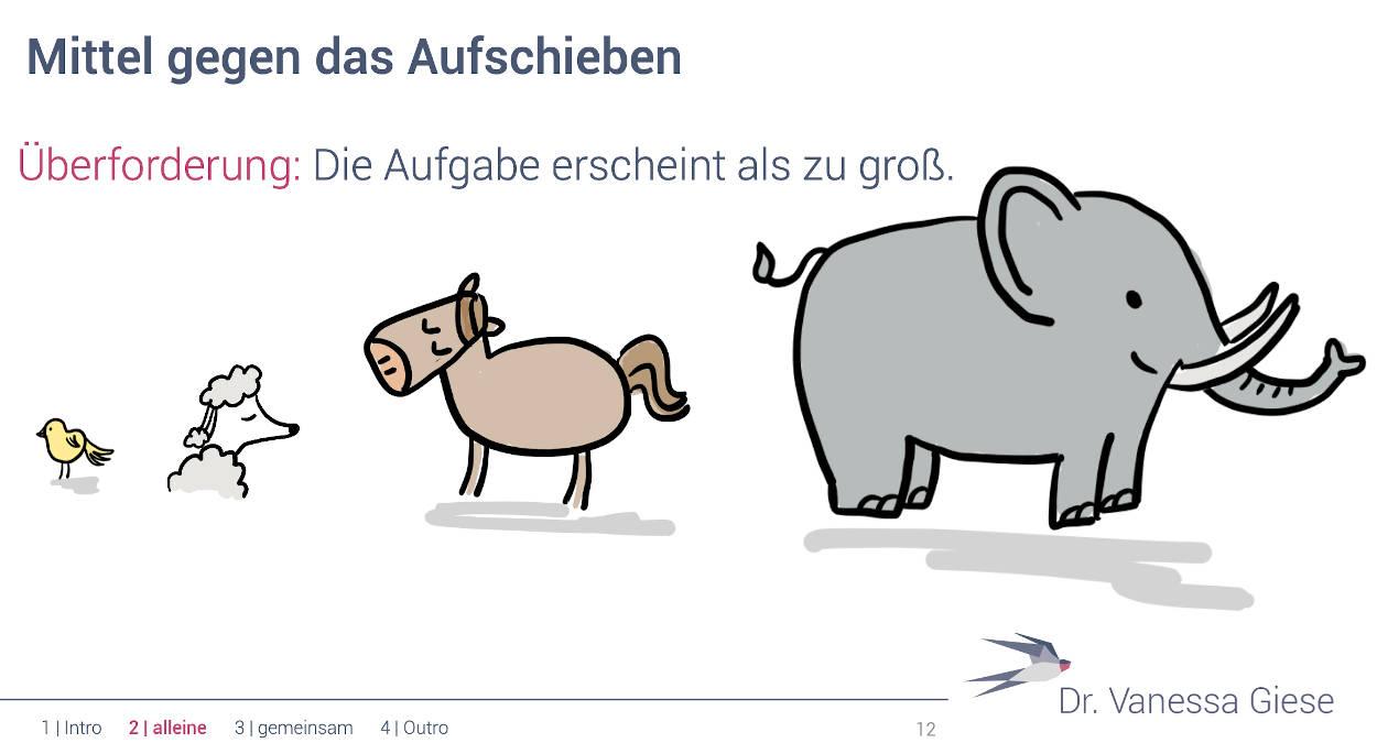 """Folie """"Mittel gegen das Aufschieben"""" - darunter ein gemaltes Küken, ein Hund, ein Pferd und ein Elefant."""