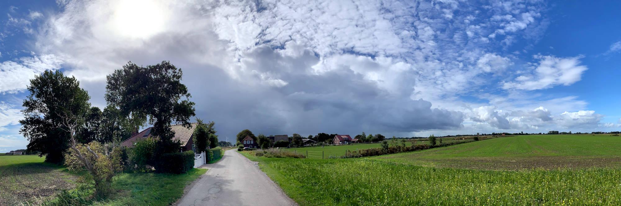 Gerade Straße, links ein Haus mit einem Baum, rechts Gras. Die Sonne scheint.