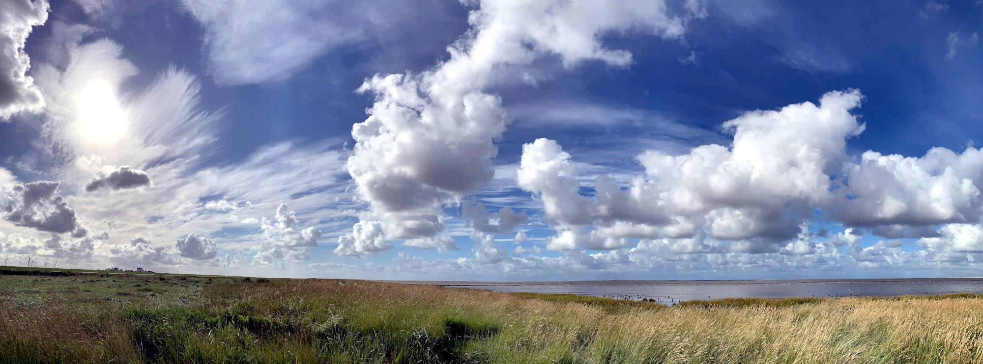 Graslandschaft, dahinter das Meer. Der Hommel ist blau mit Schäfchenwolken.