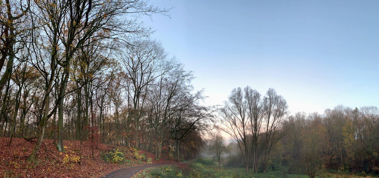 Herbstliches Parklandschaft mit Bäumen, Laub und aufgehender Sonne. Ein Weg windet sich. In der Ferne Nebel.