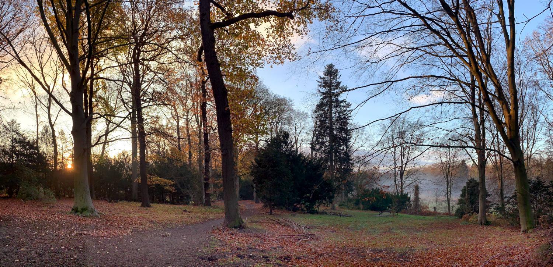 Herbstliches Parklandschaft mit Bäumen, Laub und aufgehender Sonne. In der Ferne Nebel.