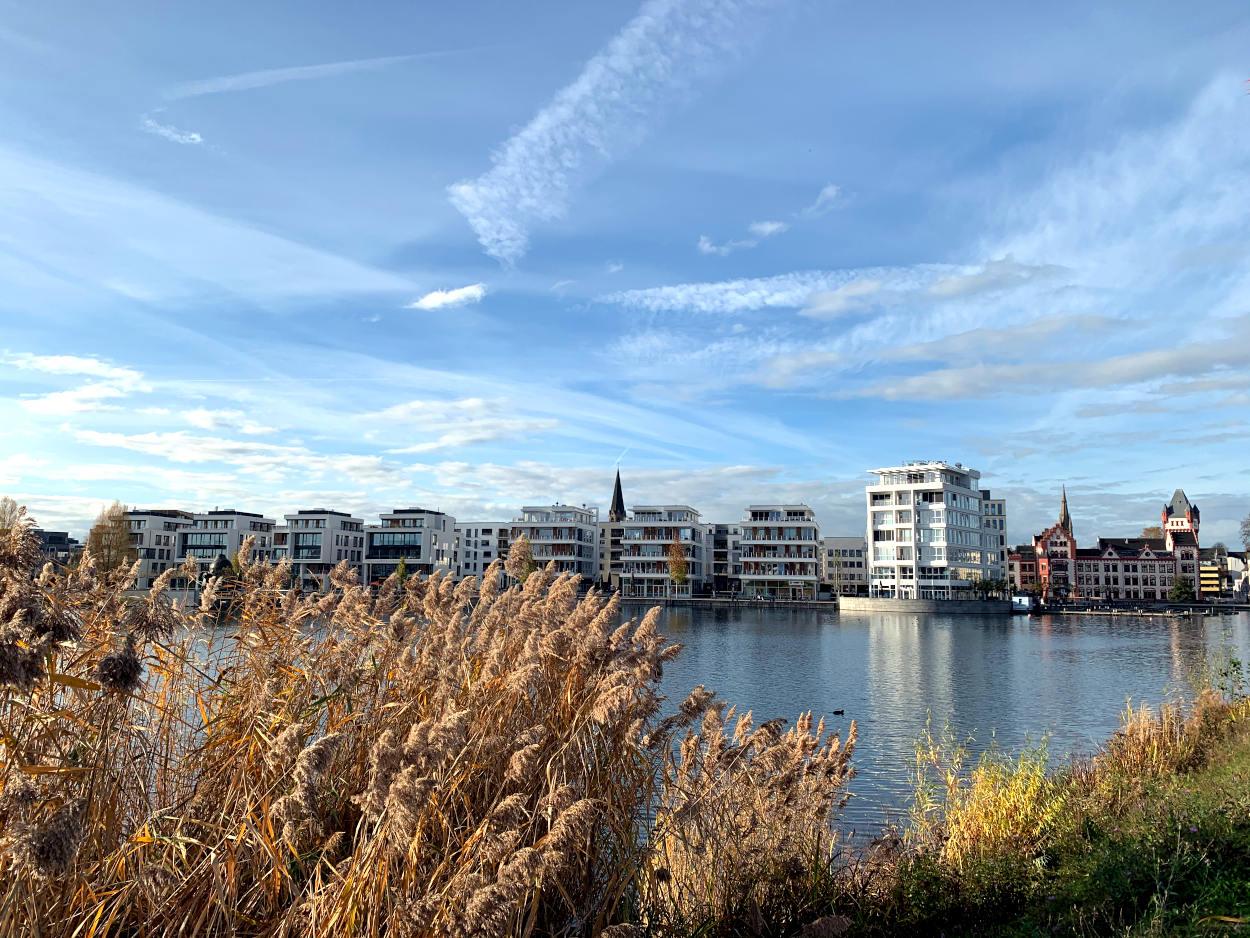 Blick auf die Hafenpromenade am Phoenixsee: Im Vordergrund Schilf, dann See, in der Ferne moderne, weiße, kastenförmige Häuser