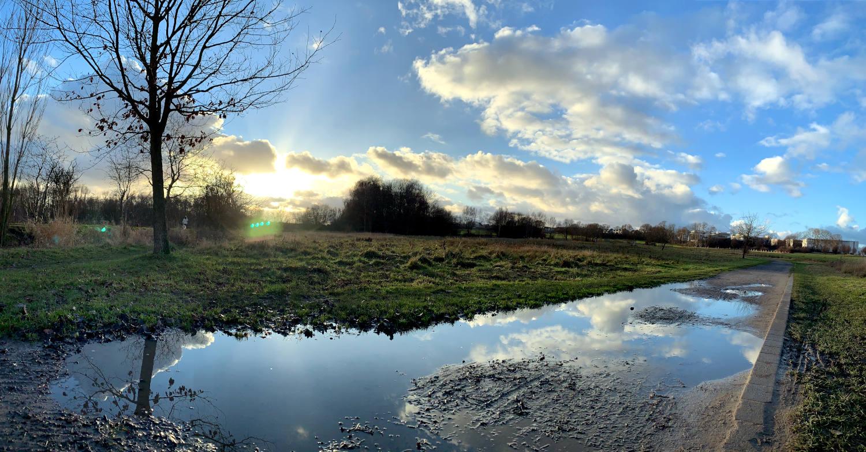 Feld mit einem Weg, auf dem Pfützen stehen, in denen sich die WOlken spiegeln