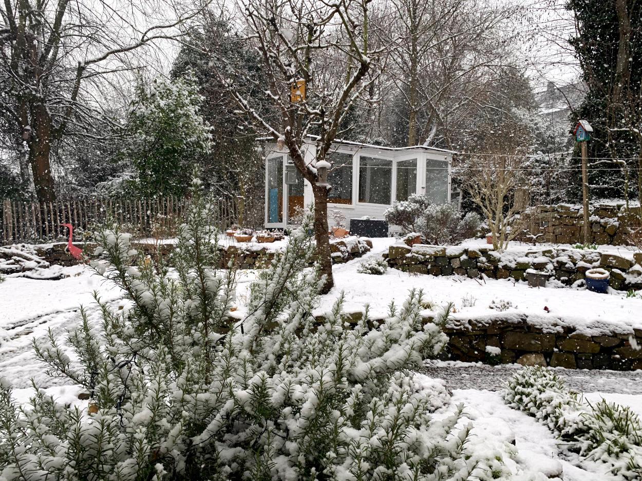Schneebedeckter Garten, es schneit
