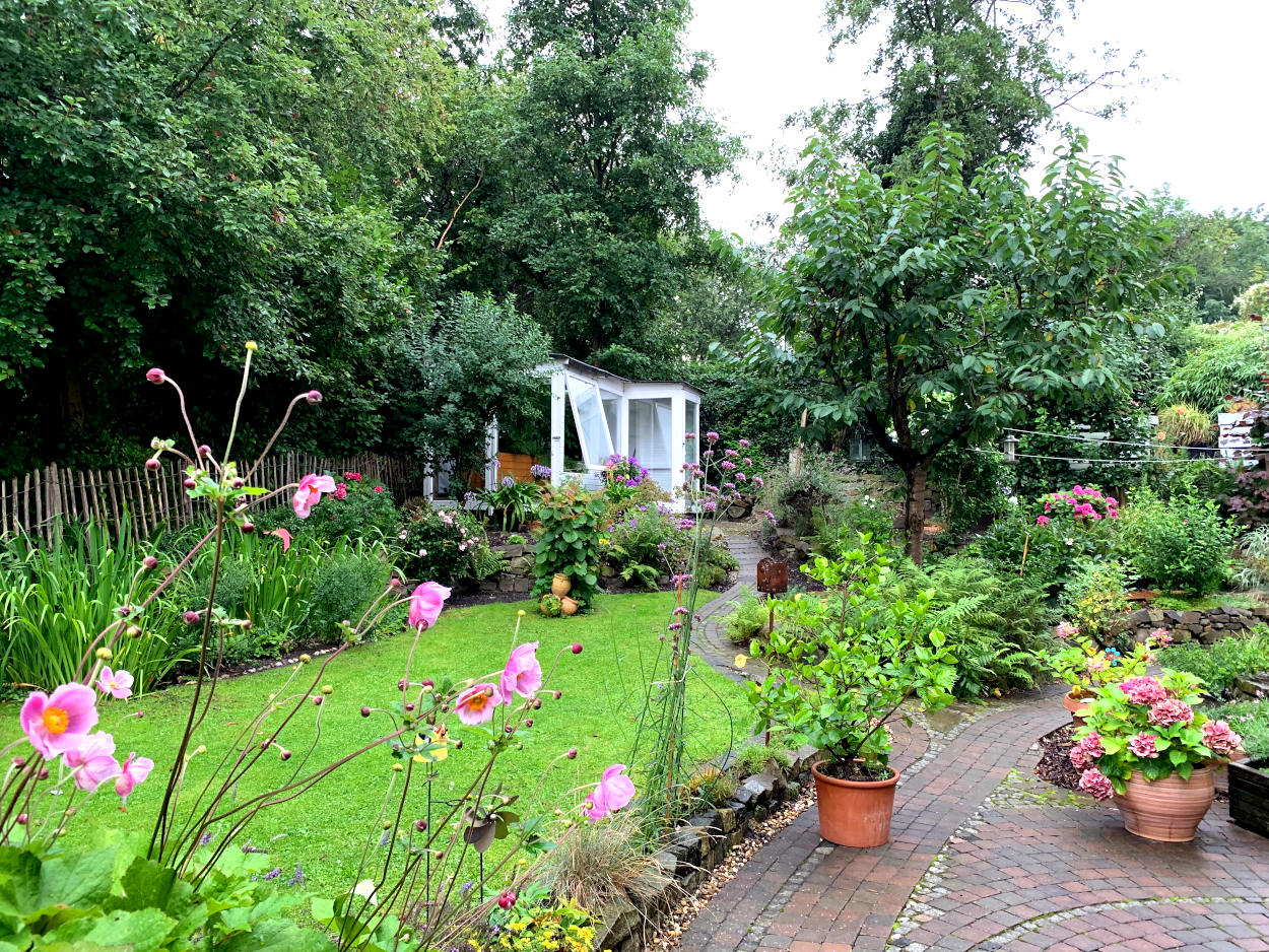 Üppiger Garten im Regen